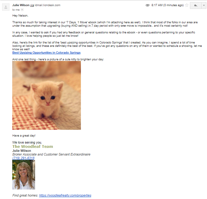 Cute Kitty Email