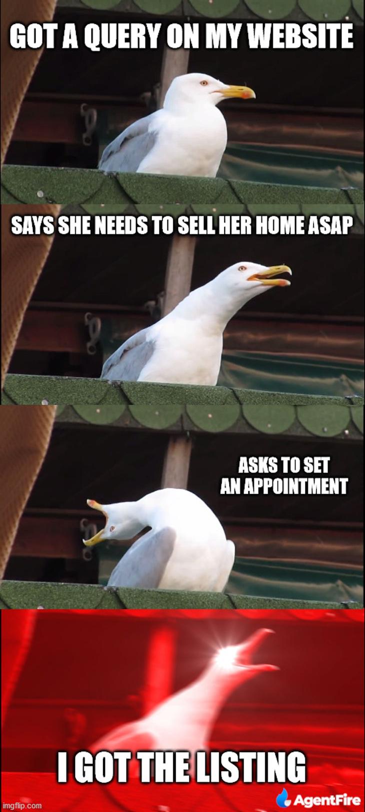 got the listing