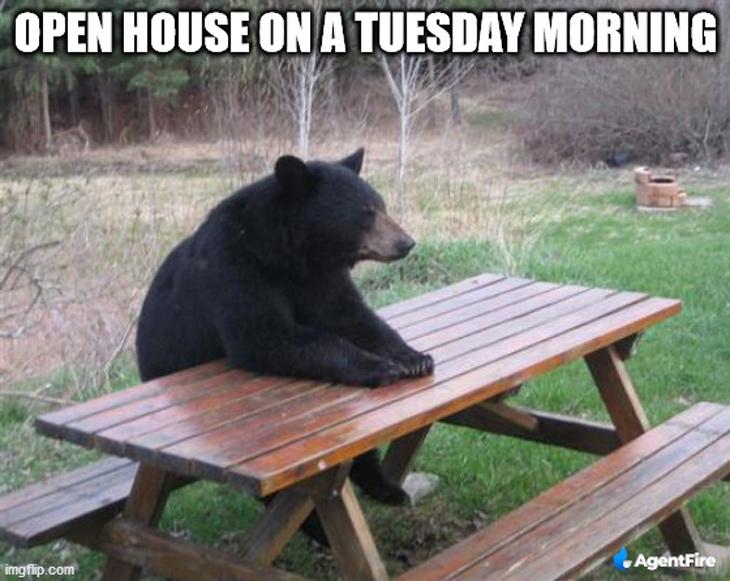 patient bear is patient