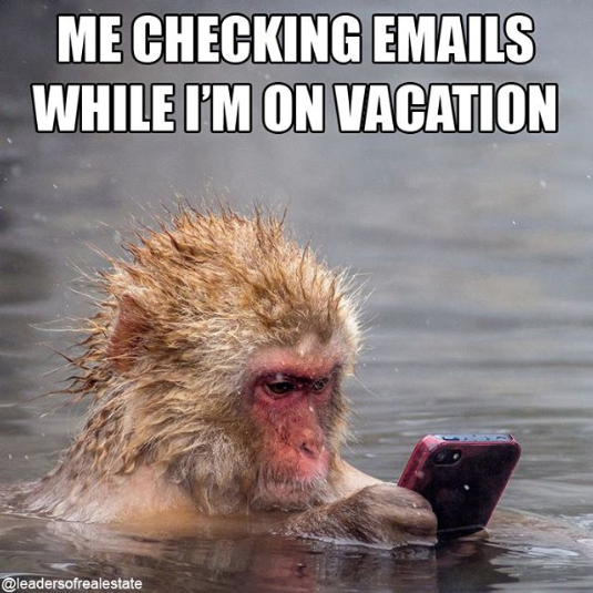 checking emails on vacation